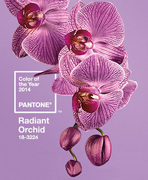 Gift Trends: Pantone Color of the Year